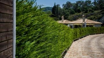 villas-in-arillas-corfu-facilities-gallery-8